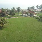 Vista del jardin desde mi habitacion