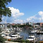 Directly overlooking the harbor and boats coming and leaving...
