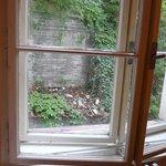 'View' from bedroom window