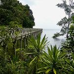 from Nongsa, the boardwalk to Turi Resort