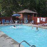 pool at Studio Plus-very nice!