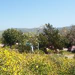 San Mateo Campground, March 2008