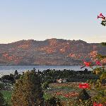 View of Okanagan Lake from Apple Blossom B&B