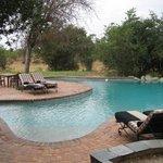 Pool at Ngala