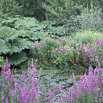 Lisle Combe Garden