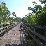 Biking on the New River Trail