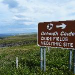 The Ceide Fields