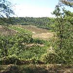 pormulo vecchio view
