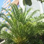Hotel + Garten mittlerer Teil