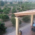 terraza de desayuno