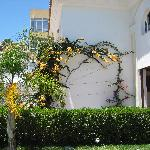 Foto van Hotel La Luna Blanca