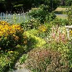 One of the many flower gardens.