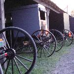 Amish buggies parked outside