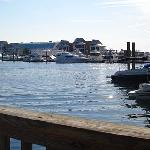 View from Dockside Restaurant