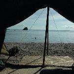 dalla tenda