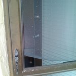 Hole in screen door to patio