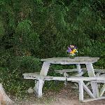 Private spot for al fresco dining outside our cabin