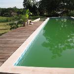 The greeny pool