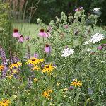 Gardens at the Meadowlark