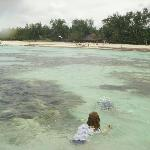 Snorkling off Diani House beach