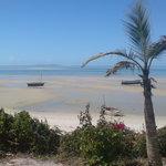 Beach at vilanculos