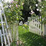 Through the gate to back / side yard