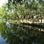 a la ribera del Duero
