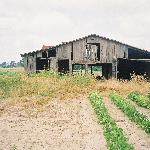 Old Barn along Hgy 61
