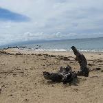Playa Gallito (Gringo Beach)