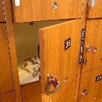 Locker at changing room at 9F Onsen (hot spring) / 9階の温泉の脱衣場のロッカー