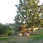 Photo of La Casa dei Cavalli