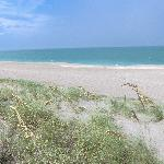 Ocean Village Foto