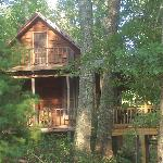 Our cabin in the woods