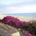 Photo de Punta Marina