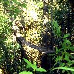 Suspension Bridge up to the hut