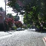 View down the street