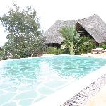 Giraffe pool & our villa