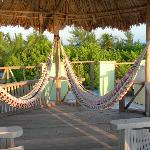 hammocks - on roof of casita