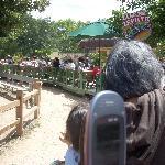 The Zilker Zephyr turns around a bend in Zilker Park
