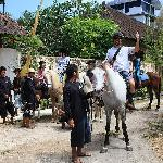 Ride horse back to villa