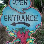 open 10-6 Wed-Sat, 10-2 on Sun