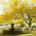 Gorgous colors in Fall