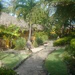 sailing club garden