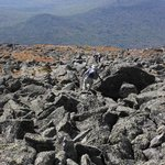Caps Ridge Trail