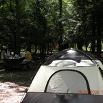 Dingmans Campground Foto