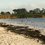 Beautiful Beach 50 metres from site