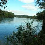 Rhein und Thur vereint
