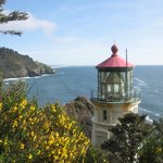 Heceta Head- Just South of Fireside