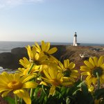 Yaquena Head Light House- 25 miles North of Fireside