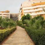 Hotel, Garden